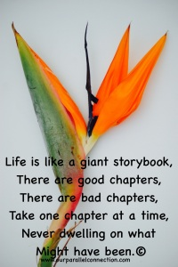 Life is like a giant storybook…